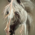 The Grey Horse Soft Pastel by Angel Ciesniarska