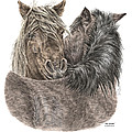 The Groom - Chincoteague Pony Print - Color Tinted by Kelli Swan