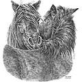 The Groom - Chincoteague Pony Print by Kelli Swan