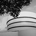 The Guggenheim Museum In Black And White by Rob Hans
