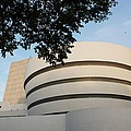 The Guggenheim Museum by Rob Hans