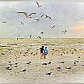 The Gulls by Carl Clay