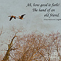 The Hand Of Friendship by Kerri Farley