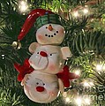 The Happy Snowman by Peggy Hughes