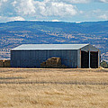 The Hay Shed by Holly Blunkall