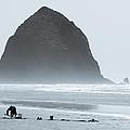 The Haze At Haystack Rock by Alexander Ferguson
