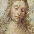 The Head Of Christ by Leonardo da Vinci