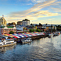 The Heart Of Valdivia by Charles Brooks