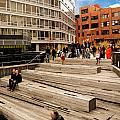 The High Line Urban Park New York Citiy by Amy Cicconi