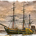 The Hms Bounty by Debra and Dave Vanderlaan