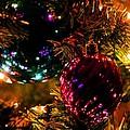 The Holidays by Maria Urso