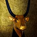 The Holy Cow by Olga Hamilton