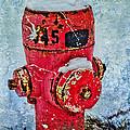The Hydrant by Tara Turner