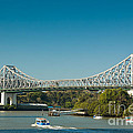 The Icon Of Brisbane - Story Bridge by David Hill