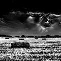 The Impending Storm by David Pyatt