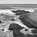 The Jagged Rocks And Cliffs Of Montana De Oro State Park In California In Black And White by Jamie Pham