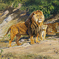 The King Watches by Rosa Bonheur