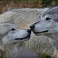 The Kiss by Athena Mckinzie