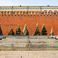 The Kremlin Wall by Alexander Senin