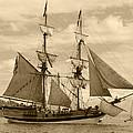 The Lady Washington Ship by Kym Backland