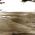 The Lagoon At The Mouth Of The Carmel River  From Fish Ranch California 1905 by California Views Archives Mr Pat Hathaway Archives