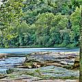 The Lake by Anita Hubbard