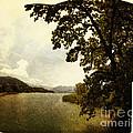 The Lake by Edmund Nagele
