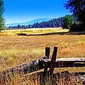 The Land With A View by Bobbee Rickard