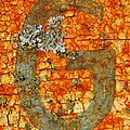 The Letter G With Lichens by Chris Berry