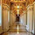 The Library Of Congress Jefferson Building by Lois  Ivancin Tavaf