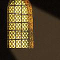 The Light by Irina Davis