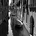 The Light - Venice by Lisa Parrish