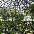 The Lincoln Park Conservatory Chicago-001 by David Allen Pierson