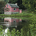 The Little Pink Cabin With Ripples by Wayne Letsch