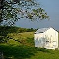 The Little White Barn by Laura Corebello