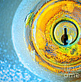 The Lock by Tara Turner