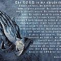 The Lord Is My Shepherd by Albrecht Durer