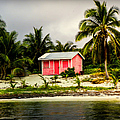The Love Shack by Karen Wiles