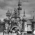 The Magic Kingdom by Bill Hamilton