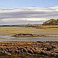 The Maine Coast by Skip Willits