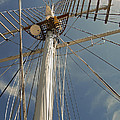 The Mainmast Of The Amazing Grace by Jani Freimann