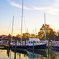 The Marina At St Michael's Maryland by Bill Cannon