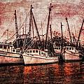The Marina by Debra and Dave Vanderlaan