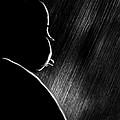 The Master Of Suspense by Bob Orsillo