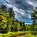 The Meandering Moose River by David Patterson