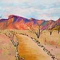 The Mesquite Trail Arizona by Marita McVeigh