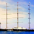 The Mighty Maltese Falcon by Karen Wiles