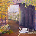 The Mill Swan by Loretta Luglio