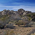 The Mojave Desert by Mountain Dreams