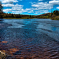 The Moose River At The Green Bridge by David Patterson